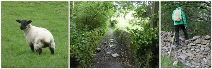 CumbriaWayDay1